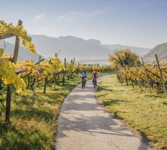 Bike Special - Hotel Seeleiten