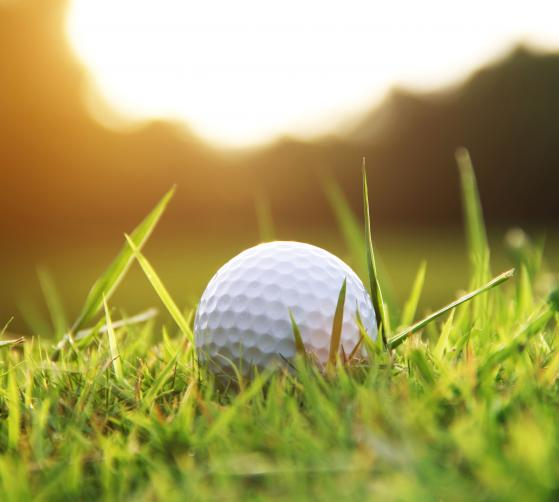 Golf Special - Hotel Seeleiten