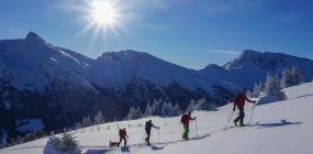 Gemeinsam statt einsam - Skitourenschnupperkurse im neuen Jahr