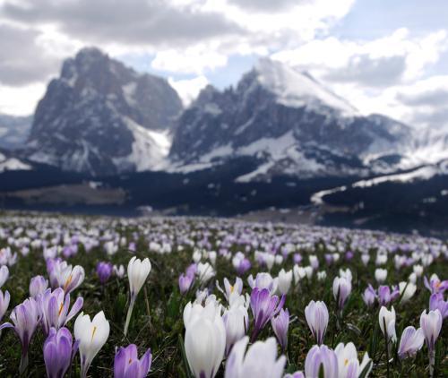 Ostern in den Dolomiten