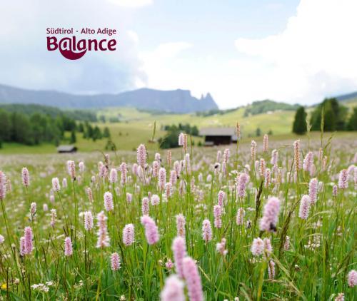 Südtirol Balance. Aktiv und gesund in den Frühling