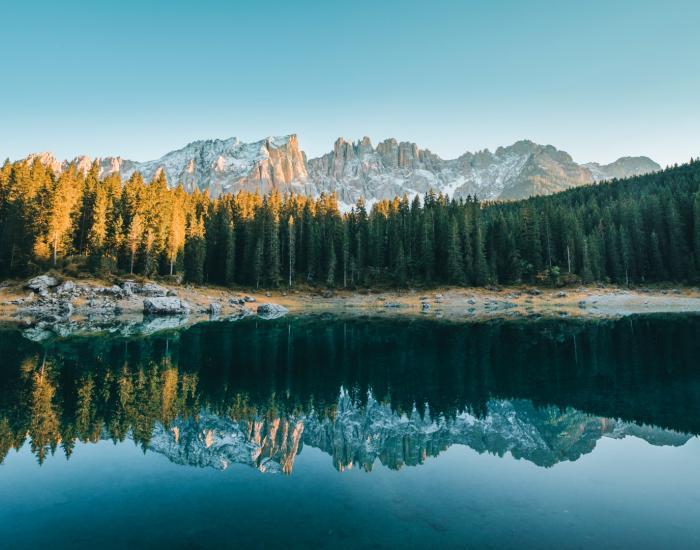 Wild und Waldwochen