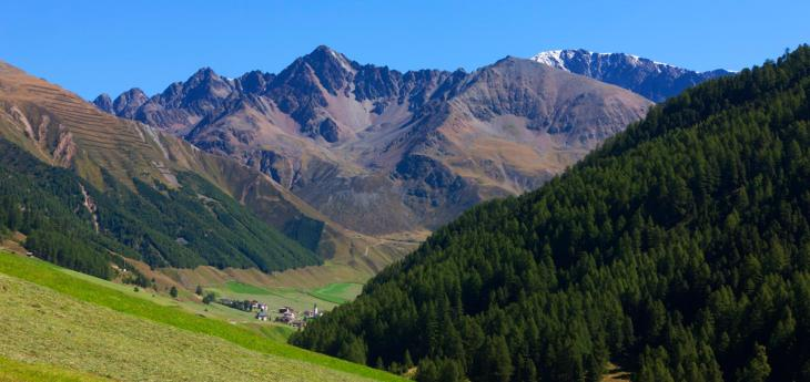Le settimane alpine