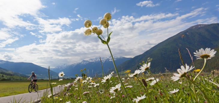 Blütenwochen